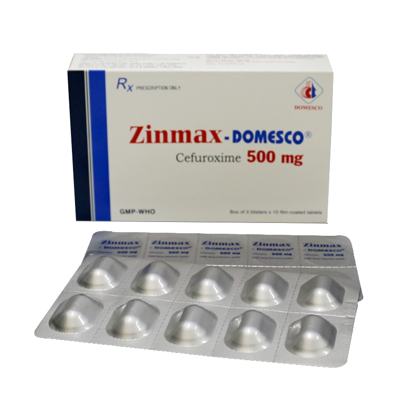Zinmax - Domesco 500mg